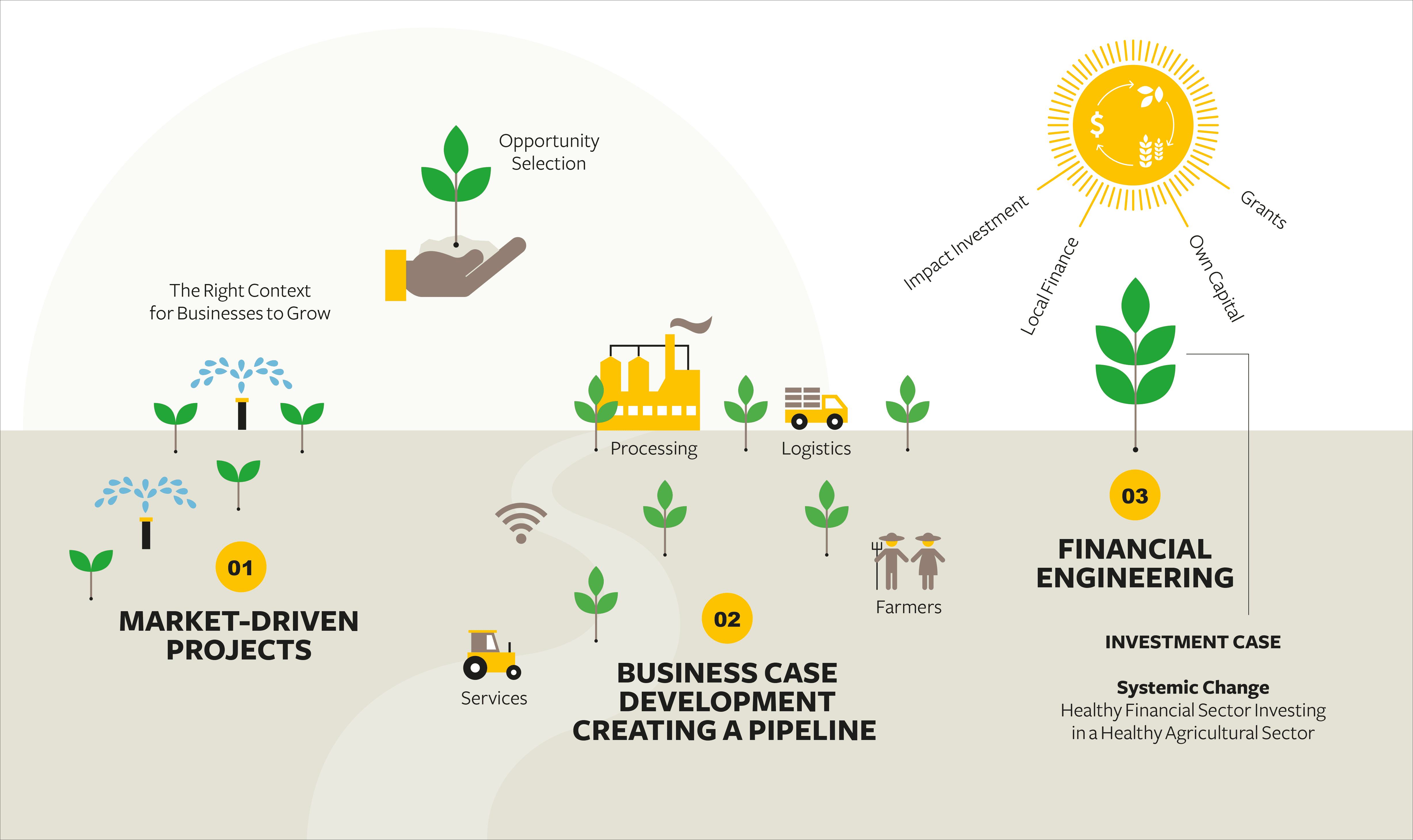 Solidaridad, positioning, papers, coffe, impact investment, infographic, farmers, green, leafs, sun, water, business case, financial, market-driven, projects